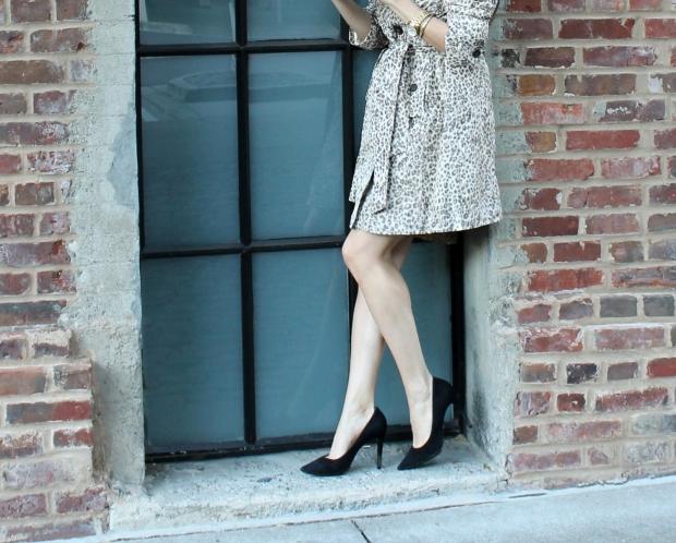 Kitties + Couture: #LoveYourLatte